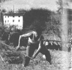 Polipaso 1960